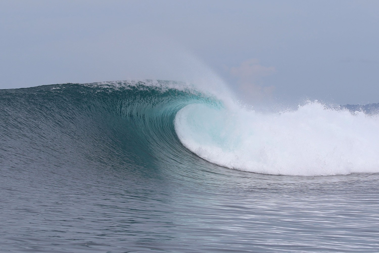 pulse-surf-charters-plenty-rights-02