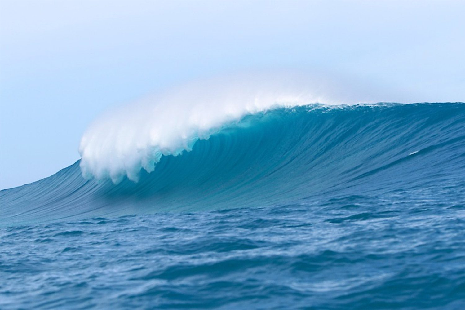 pulse-surf-charters-bombie-01