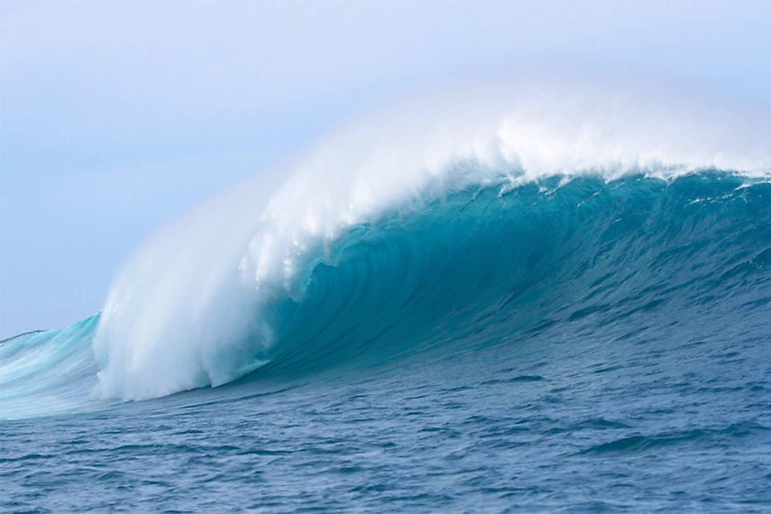 pulse-surf-charters-bombie-02