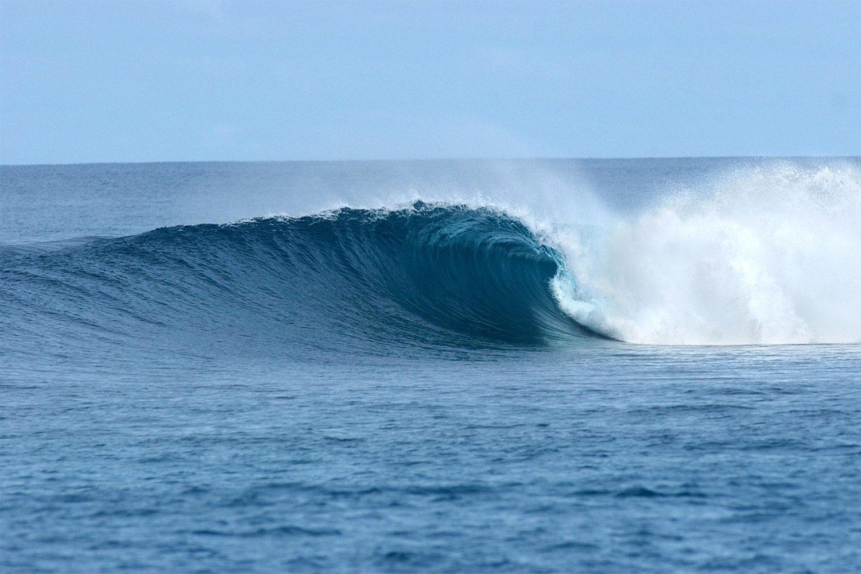 pulse-surf-charters-lizards-nest-02