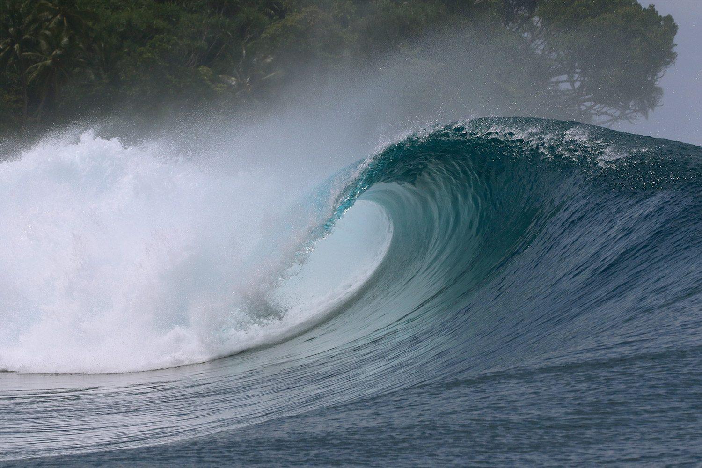 pulse-surf-charters-plenty-lefts-06