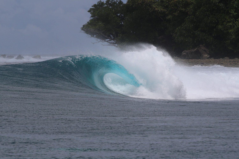 pulse-surf-charters-treasures-10