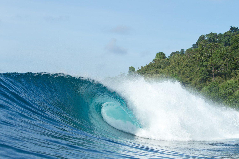 pulse-surf-charters-treasures-14