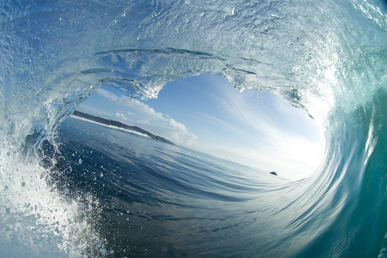 pulse-surf-charters-treasures-16