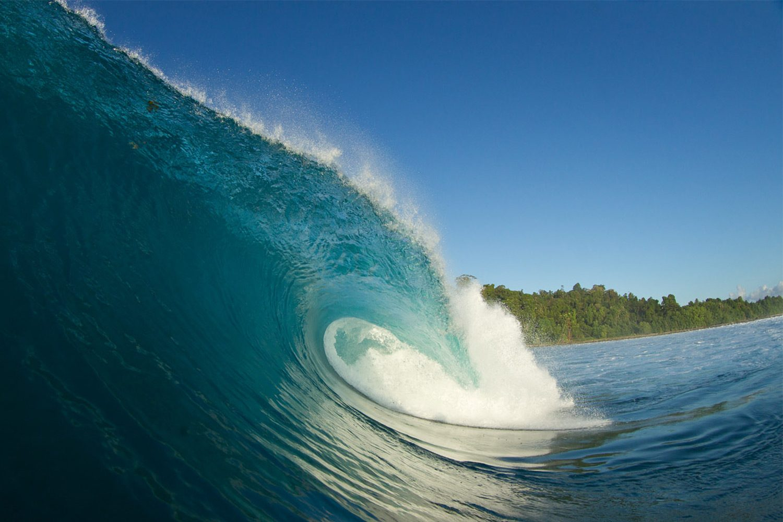 pulse-surf-charters-treasures-17