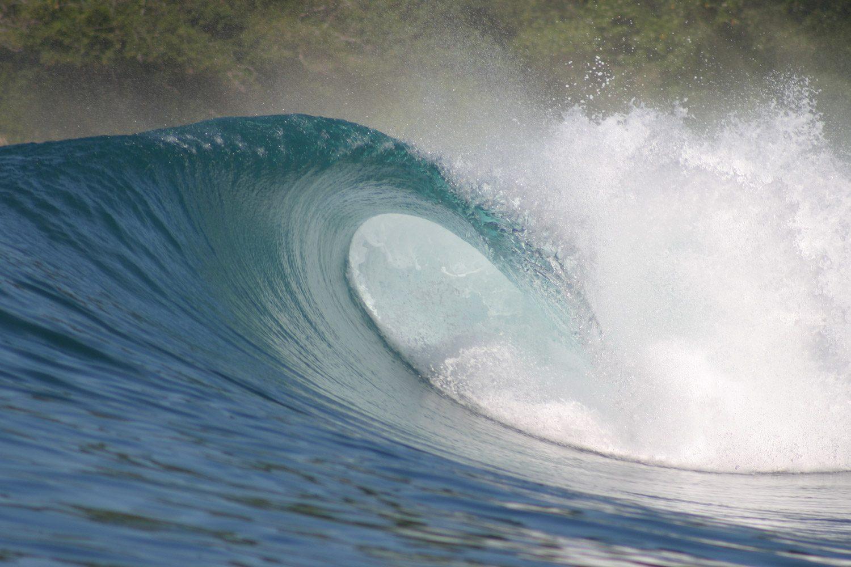 pulse-surf-charters-treasures-23