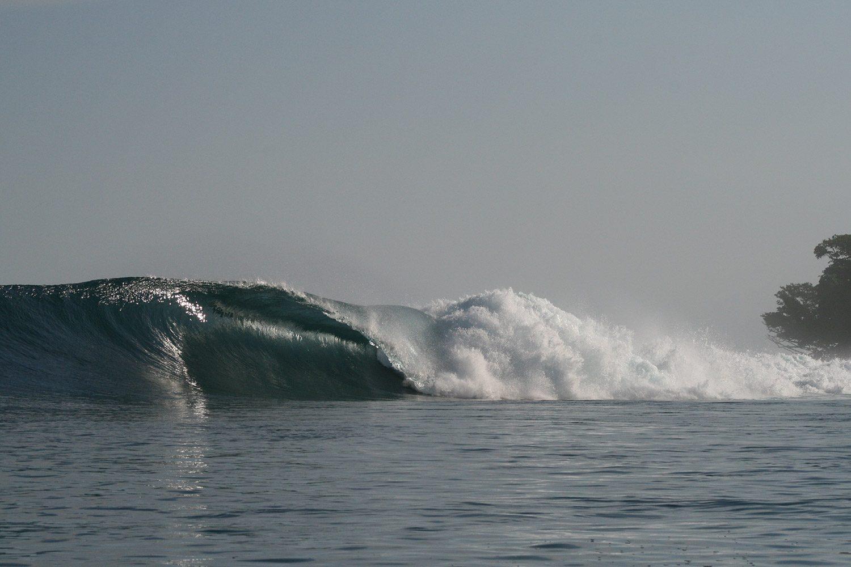 pulse-surf-charters-treasures-24