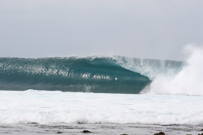 pulse-surf-charters-treasures-32