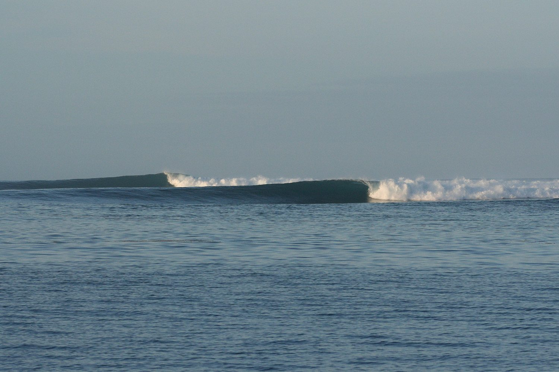 pulse-surf-charters-treasures-35