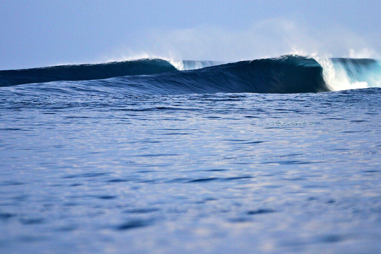 pulse-surf-charters-treasures-40