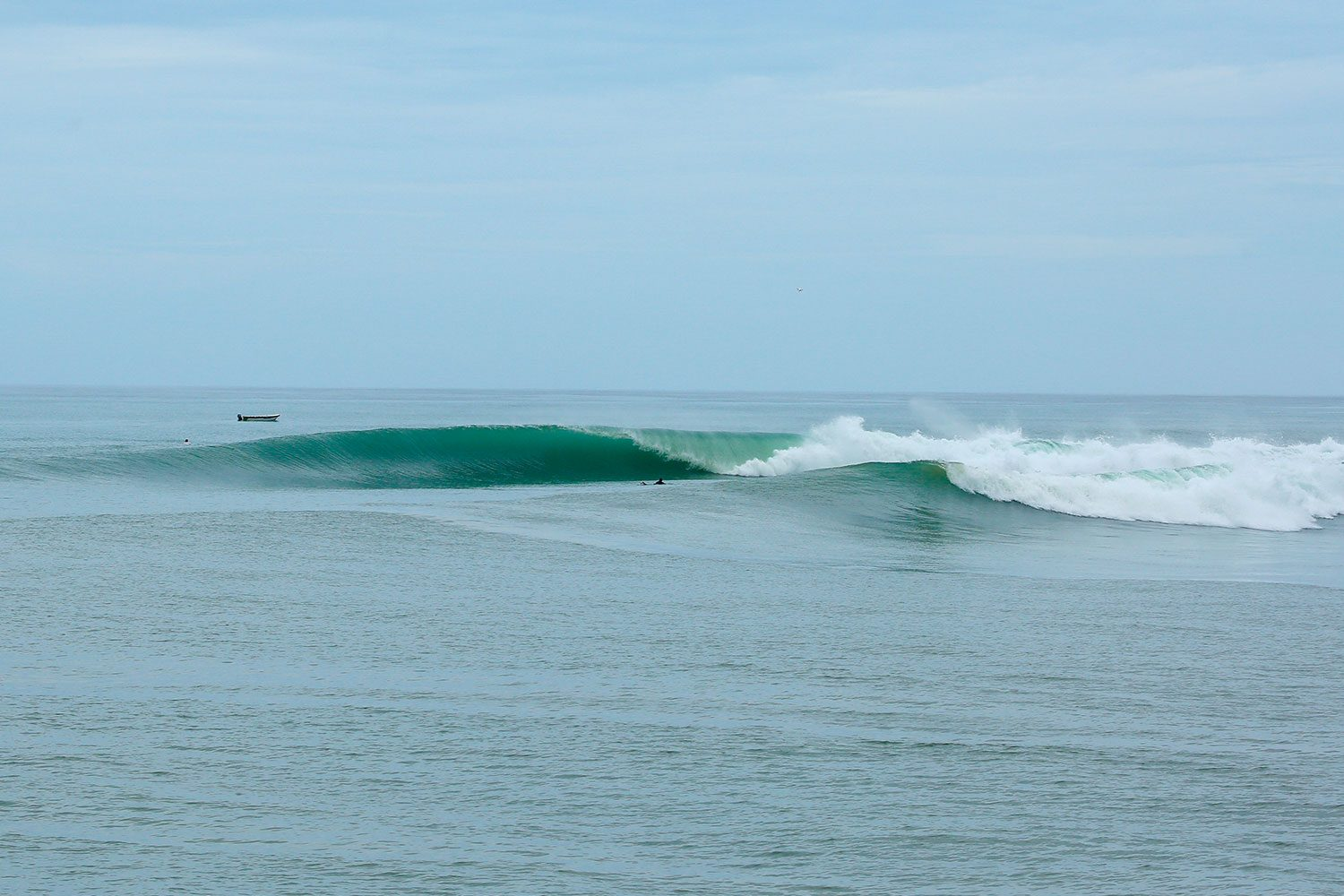 pulse-surf-charters-north-nias-07