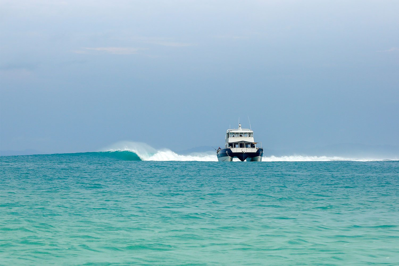 pulse-surf-charters-pulse-29